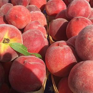 Peaches & Cream Wine Dinner